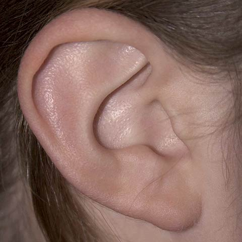 Higiene do ouvido