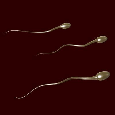 Alimentos para aumentar a fertilidade masculina