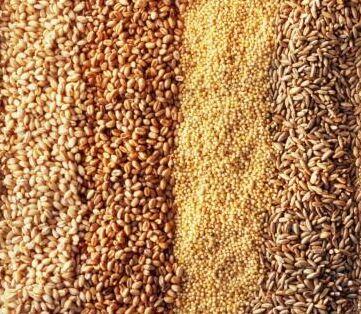Os benefícios dos cereais integrais