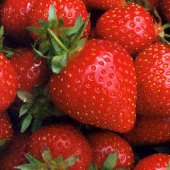 Propriedades e benefícios do morango