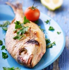 Consumir pouco peixe é ruim para a saúde