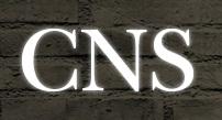 CNS SAPATOS, WWW.CNSCALCADOS.COM.BR