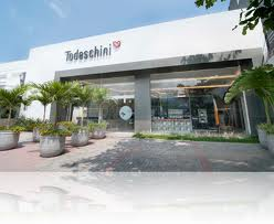 TODESCHINI RJ, WWW.TODESCHINIRIO.COM.BR