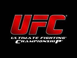 UFC COMBATE, WWW.UFCCOMBATE.COM.BR