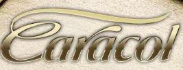 LOJAS CARACOL CHOCOLATES, FRANQUIA, WWW.CARACOLCHOCOLATES.COM.BR