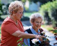 A vitamina D poderia baixar o risco de câncer em mulheres idosas