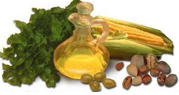 A Vitamina E e seu grande poder antioxidante