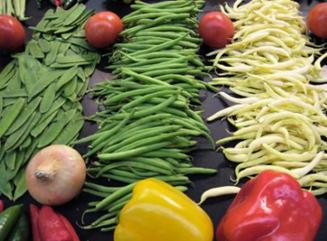 Os alimentos ecológicos são melhores? Benefícios, virtudes e propriedades