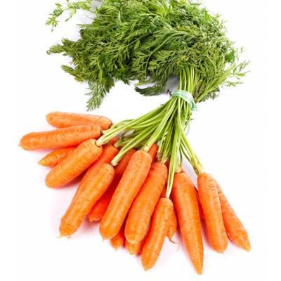 Cenouras: benefícios e propriedades das cenouras